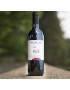 Tutti i vini più pregiati di Sorbaiano